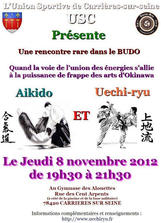 20121107 rencontre aikido uechi petit