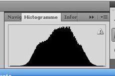 histogramme normal