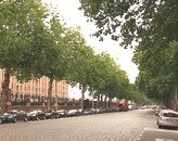 avenue-du-port-copie-1.jpg