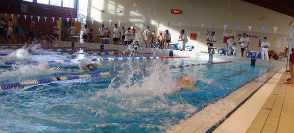 le blog du clc natation site du club de natation de