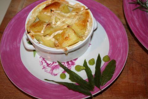 cuisine 599