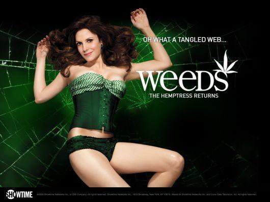weeds-4053207eezfb.jpg