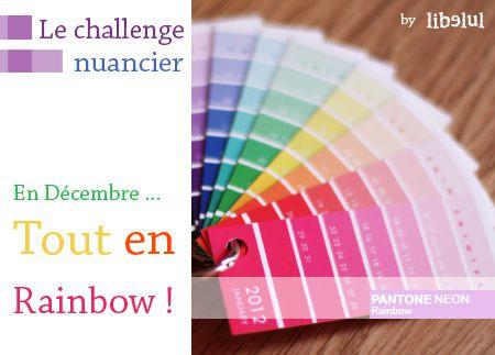libelul-banner-challenge-nuancier-201112.jpg