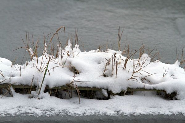 neige-4346-Modifier.jpg