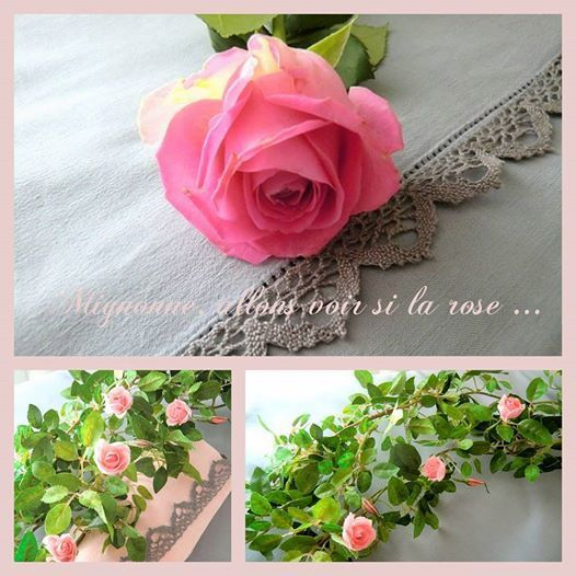 table rose et gris montage