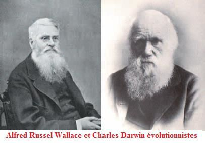 Alfred Russel Wallace et Charles Darwin evolutionnistes