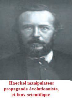 Haeckel scientifique imposteur des maçons