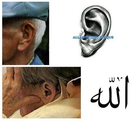 5-Allah-inscrit-oreille-ages-copie-1.JPG