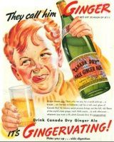 red-story-canada-ginger-ale-tns0.jpg