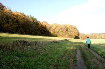 savonnières automne
