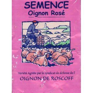 oignon-rose-de-roscoff-.jpg