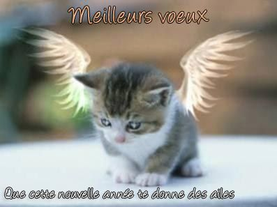 bonne-annee-ange.jpg