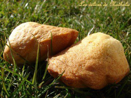 madeleines tonka 2