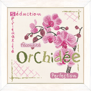 Orchidee-LLP.png