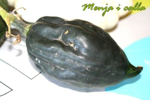 courge1