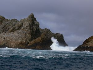 FarallonIslands-Jan2010 - 6