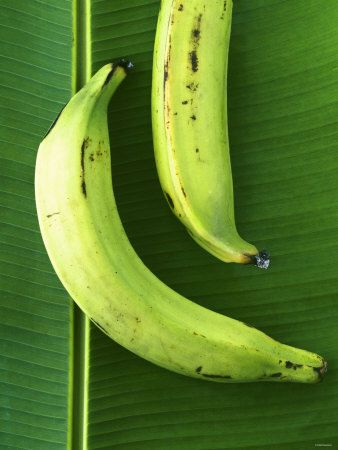 -two-plantains-on-a-banana