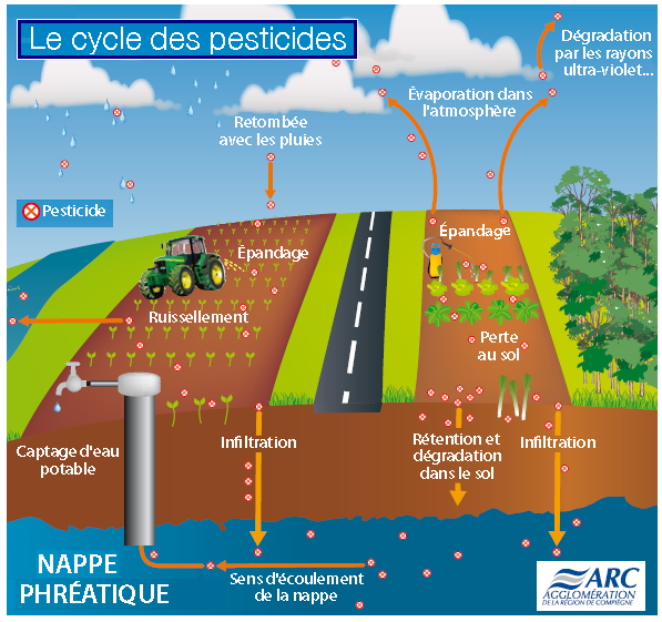 Cycle-des-pesticides.PNG