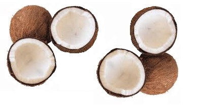 noix-coco.PNG
