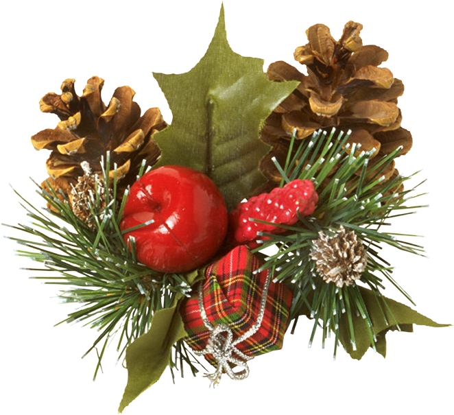 Image noel d co pomme pin tube pour la creation for Decoration couronne de noel