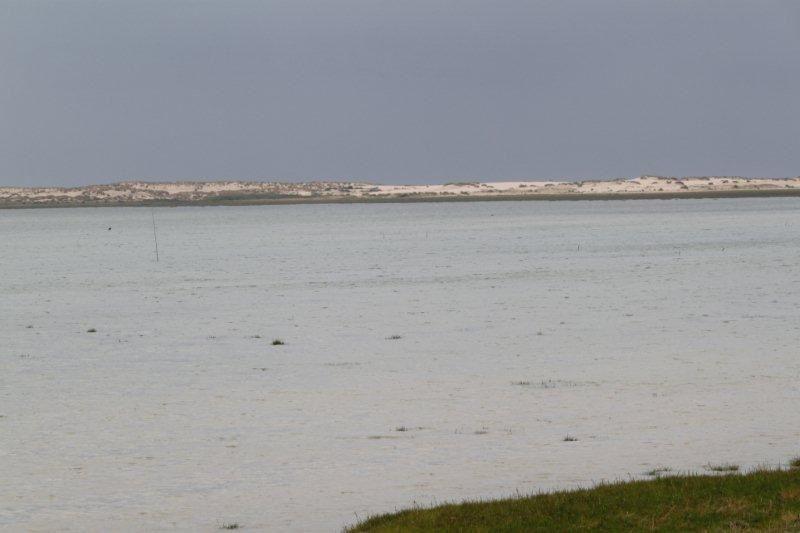En Presqu'île d'Arvert (11)