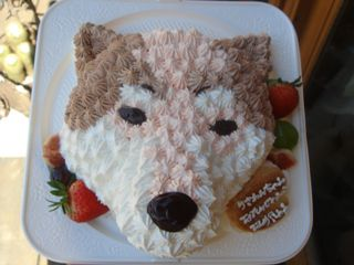 inu-cake.jpg