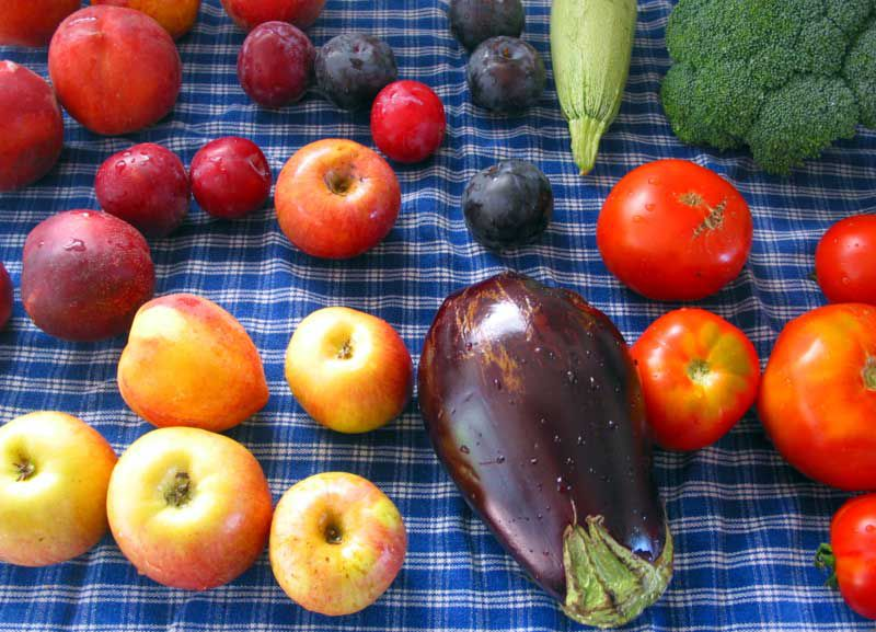2 la conservation des fruits et l gumes le blog de ahmml. Black Bedroom Furniture Sets. Home Design Ideas