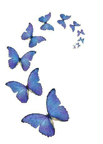 papillons-bleus.jpg