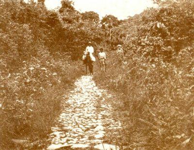 photo-1880