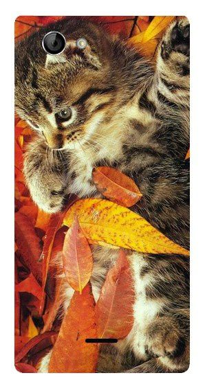 Coque Chat Automne Xperia J