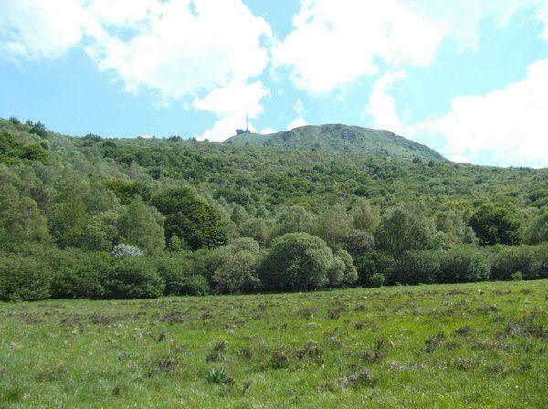Photos Puy de Dôme le 16 juin 2013 071