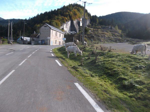 Photos col d'Aspin le 4 octobre 2014 031