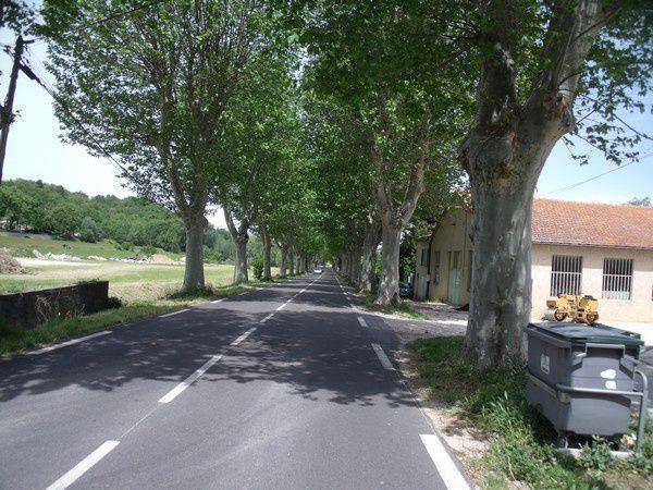 Photos tour du Ventoux le 17 mai 2012 064