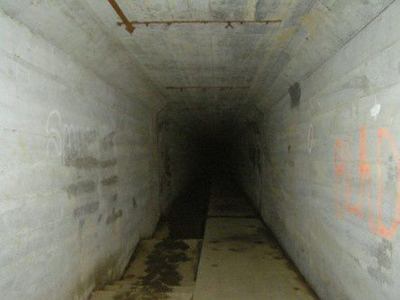 Tunnel_Waverly.jpg