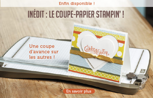 coupe-papier-stampin-0F51B9C0CFAF970256953920A66B428F2A716F.png
