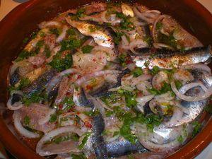 sardine_marin_es_1