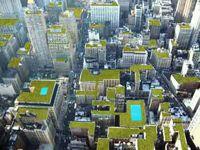 newyork roof gardens