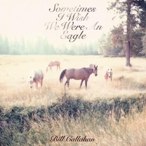 bill-callahan-sometimes-i-wish-we-were-an-eagle