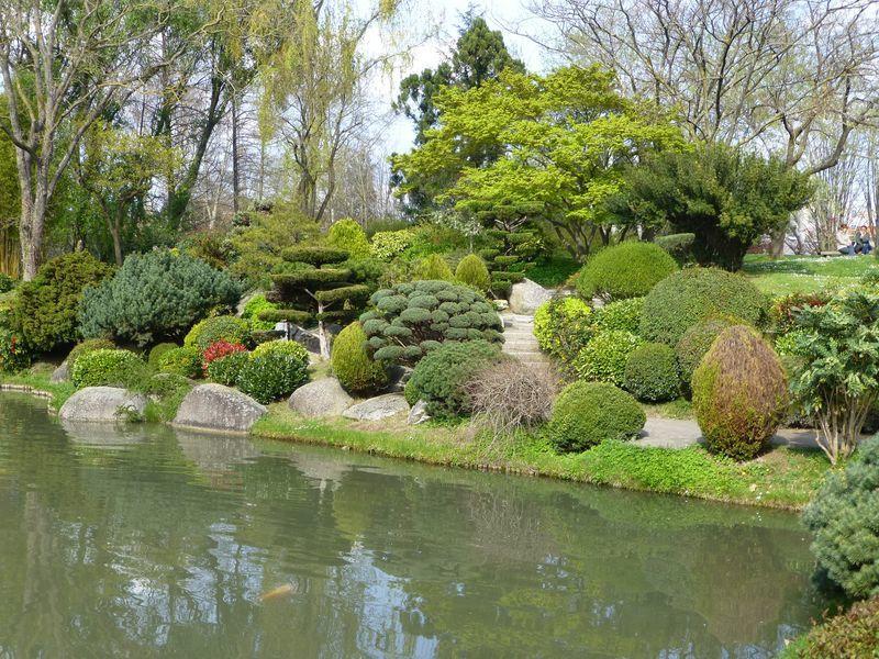 printemps au jardin japonais de toulouse le blog de dilettante. Black Bedroom Furniture Sets. Home Design Ideas