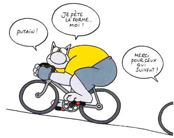 Chat-velo