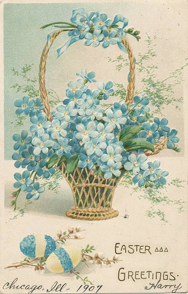Forget_Me_Not-1907.jpg
