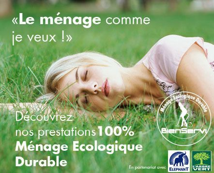 menage_ecologique.jpg