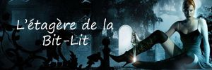 Le week-end de la bit-lit