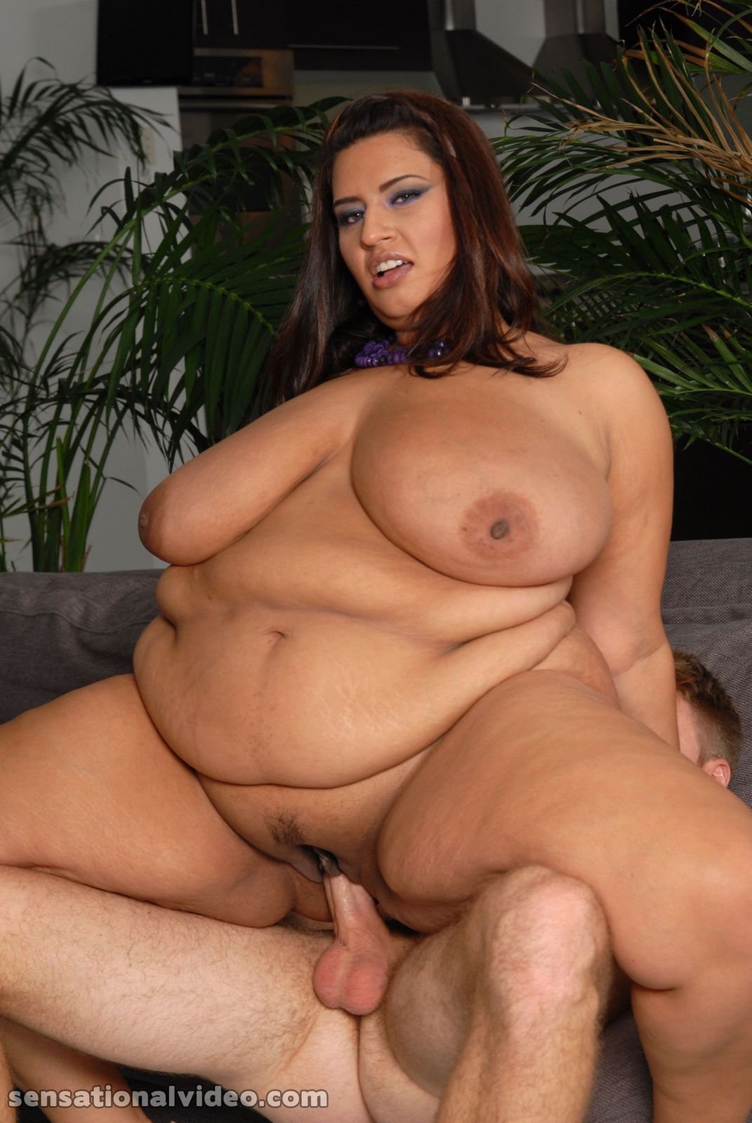 Like Sofia rose bbw