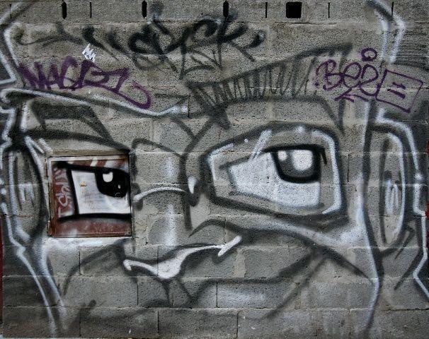 38 - Grenoble : homme à casquette