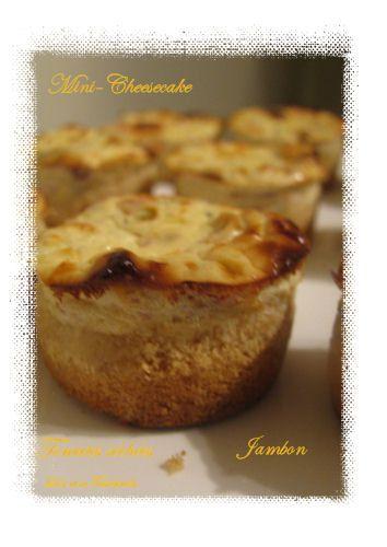 Mini-cheesecake-aux-tomates-sechees-et-jambon--4-.JPG