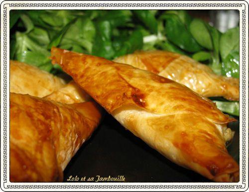 Feuilletes-au-fromage-a-la-grec--parmesan-feta--copie-1.JPG