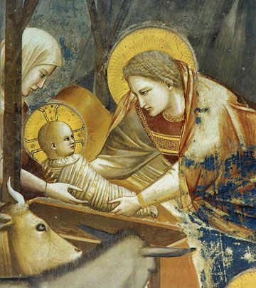 giotto-nativite