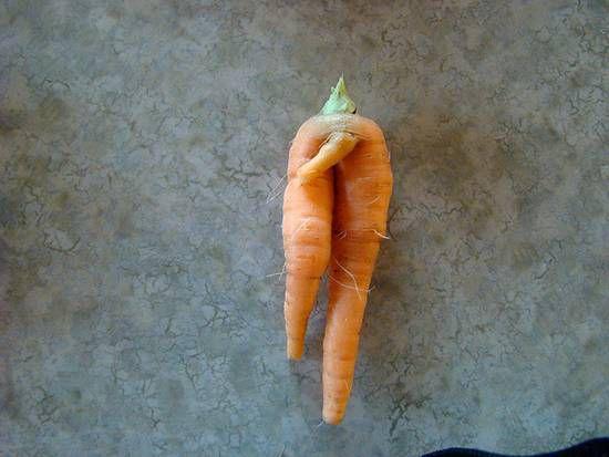 carotte-3.jpg