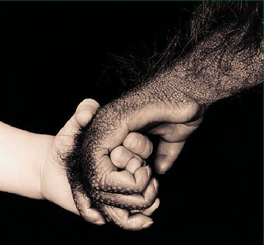 child-monkeyhands.jpg